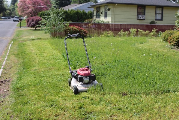 However, Keeping Your Lawn Pretty Can Be Quite A Job. Everything On Your  Lawn Is A Living Thing That Has To Be Nurtured Regularly.